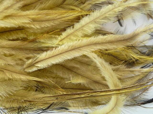 Uniquely Emu Products Inc Medium Emu Feathers